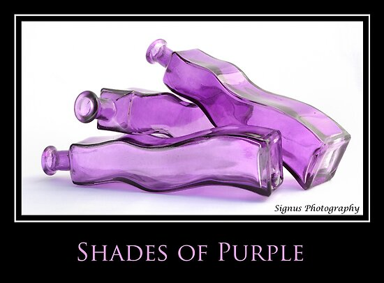 shades of purple by Gary Heald LRPS