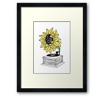 Singing in the sun Framed Print