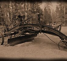 The Old Rip Snorter by R-4-G