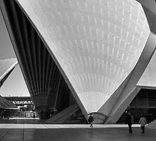 Sydney Opera House - Sydney, NSW Australia by Mark Richards