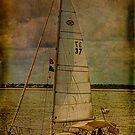 Sailing 37 by Deborah  Benoit
