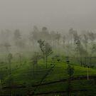 MisTea Hills by M-A-K