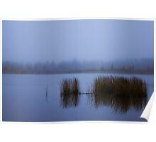 Vermilion's Fog Poster