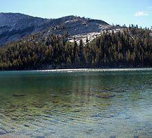 Tenaya lake by Lucy Adams