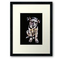 Puppy Dog Eyes Framed Print