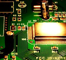 Circuit Board by George Lenz