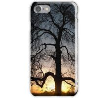 Endangered species iPhone Case/Skin