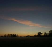 November mist at dusk by Martin Harradine