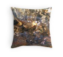 Rusty Pipe Ripples Throw Pillow