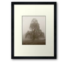 Moody Willow  Framed Print