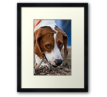 """Daisy Girl"" Framed Print"