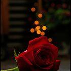 Rose by mashdown