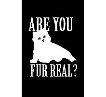 Are You Fur Real Photographic Print