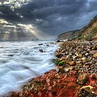 Fingal Beach by Alex Stojan