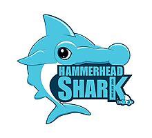 Shark, Blue Hammerhead Shark  Photographic Print