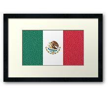 Mexican flag Framed Print