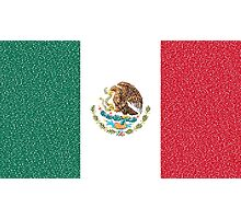 Mexican flag Photographic Print