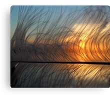 Feather 10 Canvas Print