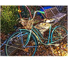 Pedals of Autumn  Photographic Print