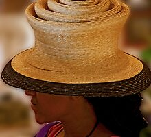 Hatter's Hat by phil decocco