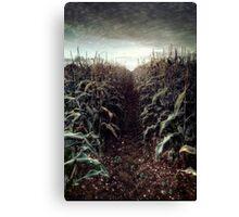 The Corn Field ii Canvas Print