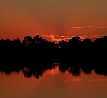 summer morning by kathy s gillentine