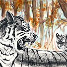 Tiger Line by UmbreoNoctie