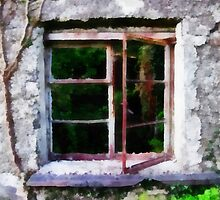 Open Window - Ruined Cottage - Carlow, Ireland  by Carlow98