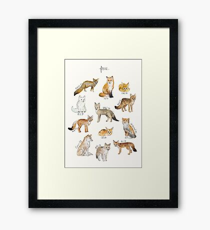 Foxes Framed Print