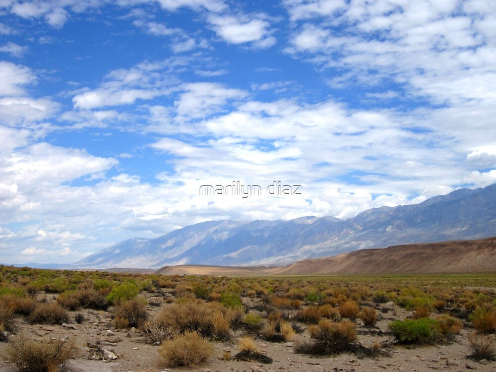 Desertscape by marilyn diaz