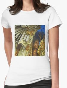 Flying above the golden rocks Womens Fitted T-Shirt