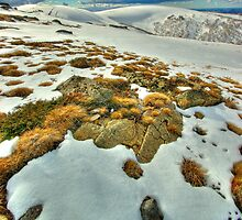 Winter snow near Mt. Nelse by Kevin McGennan