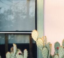 Home is where the cactus is Sticker