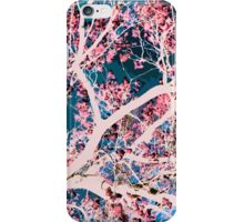 White Magnolia Tree iPhone Case/Skin