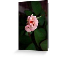 Little pinkie Greeting Card
