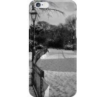 Winter path iPhone Case/Skin