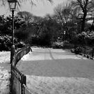 Winter path by Ms-Bexy
