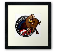 NROL-36 Program Logo Framed Print