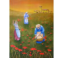 Harvesting Poppies in Tuscany Photographic Print