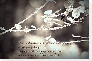 Wise Words from Winnie the Pooh... by Vanessa Barklay