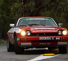 Special Stage 16 Stirling Pt.17 by Stuart Daddow Photography