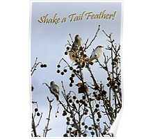 Shake a Tail Feather Poster