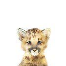Little Mountain Lion by Amy Hamilton