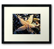 Seascapes.. Framed Print