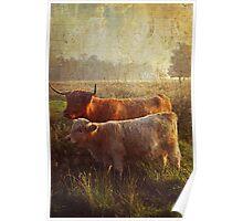 Highlanders. Scottish Countryside Poster