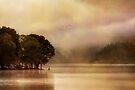 Ard Mist (3) by Karl Williams