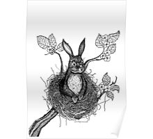 BUNNY IN NEST  Poster
