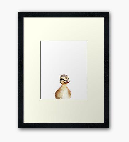 Little Duck Framed Print