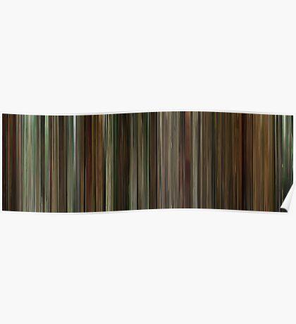 Moviebarcode: Finding Neverland (2004) Poster