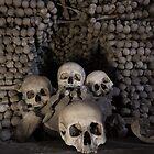 Stacked Skulls by David Baird
